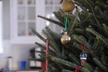 lasalle street christmas tree, 2010   simple pretty