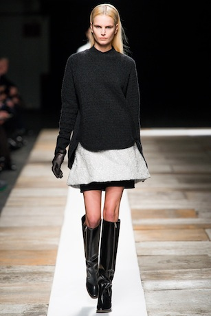 Fall 2013: Theyskens' Theory