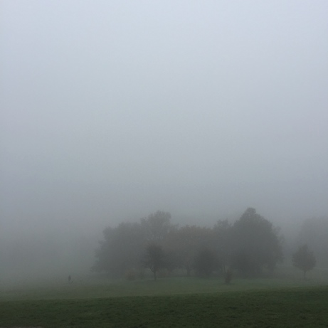 london fog (primrose hill) november 2015: jane potrykus | simple pretty