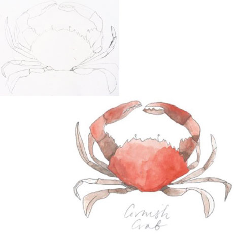 lucy bowes designs: cornish crab | simple pretty
